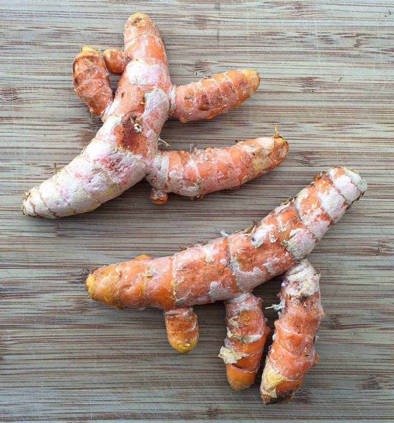 fresh turmeric roots