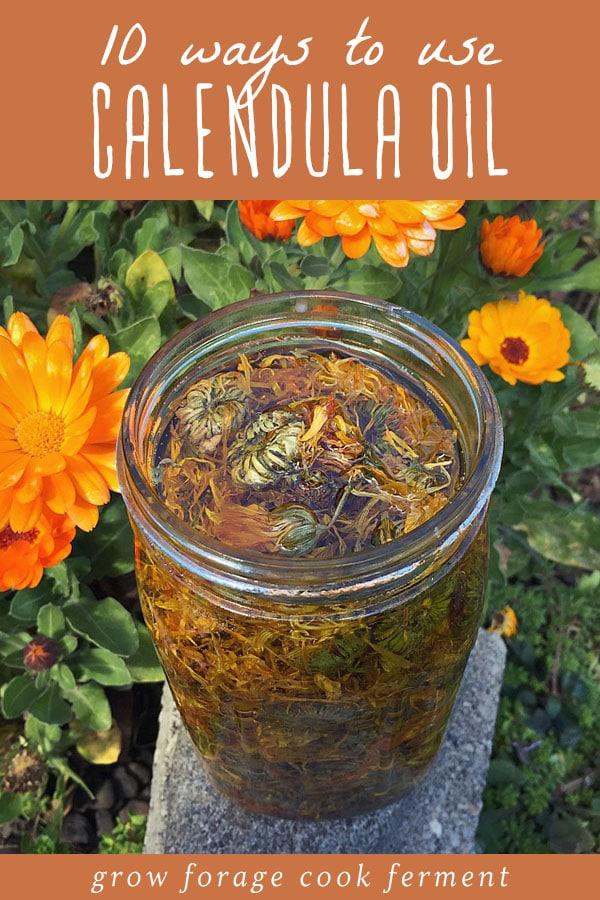 A jar of calendula infused healing herbal oil.