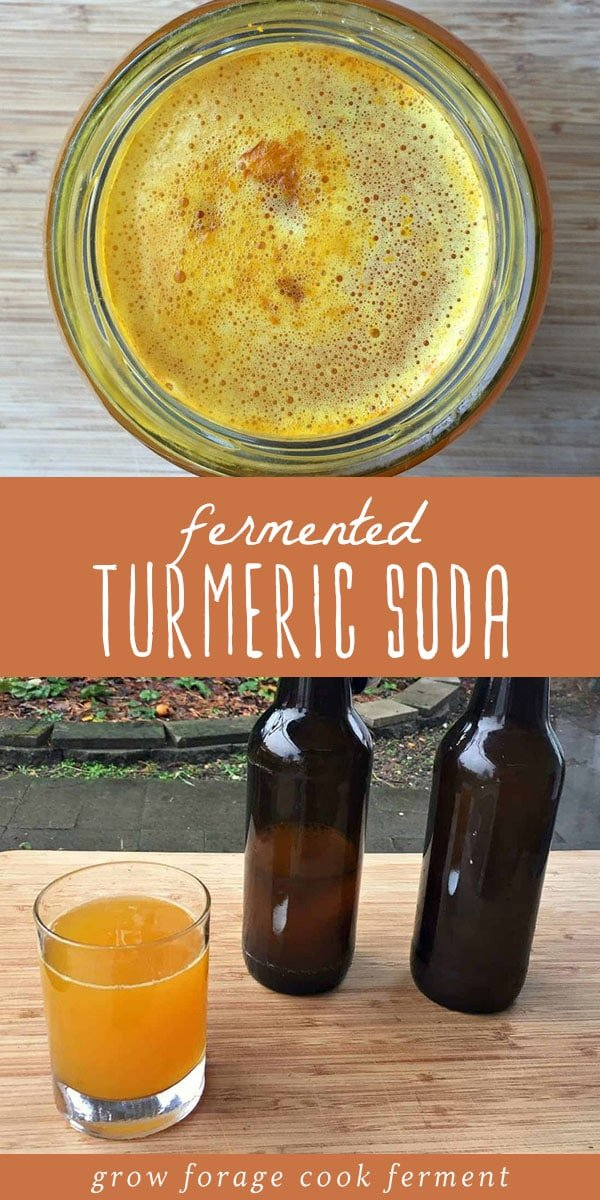 Naturally fermented turmeric soda is a delicious and healthy way to enjoy the health benefits of turmeric. Turmeric soda is an easy natural soda recipe made using a ginger bug. It's vibrant, healthy, and tastes delicious! #fermented #turmeric