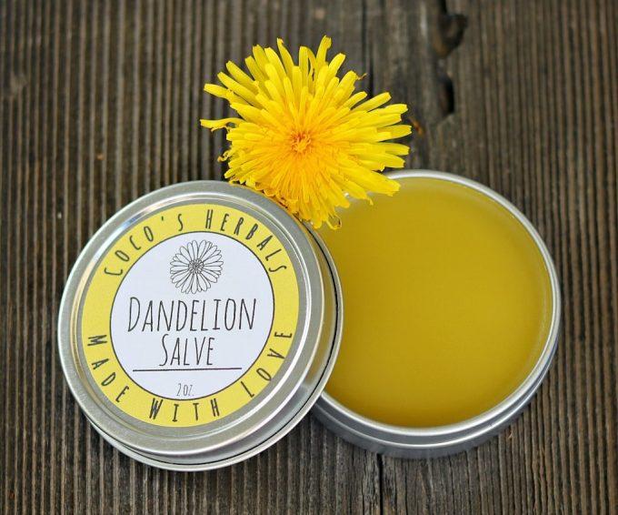 Dandelion salve with a dandelion flower