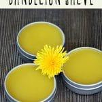 Three tins of dandelion salve on a wood background.