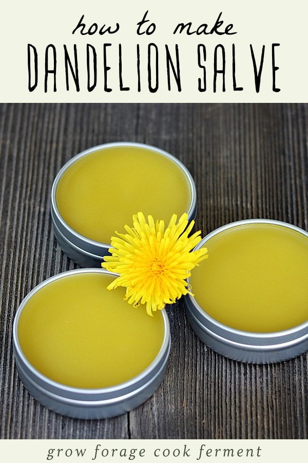 Three tins of dandelion salve on a wood background.