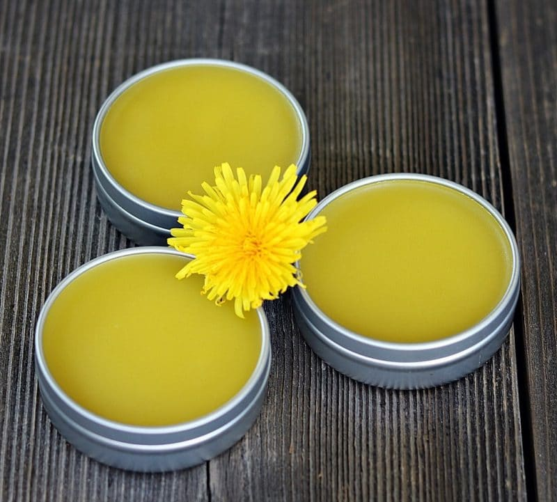dandelion salve on a wooden table
