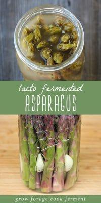 A jar of fermented asparagus with garlic.