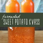 Two bottles of fermented sweet potato kvass and a mason jar of sweet potato being fermented.