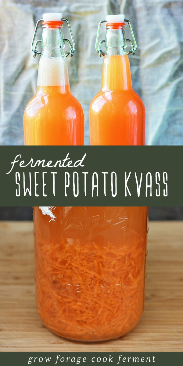 Learn how to make your own homemade naturally fermented sweet potato soda. Sweet potato kvass, also known as sweet potato fly, is sweet, tangy, and refreshing! Filled with gut healthy probiotics and featuring a vibrant orange hue, this is a delicious fermented winter beverage that's incredibly easy to make. Click through to get the recipe and learn how to make this healthy, bubbly probiotic soda! #realfood #traditionalfoods #ferment #fermented #kvass #sweetpotato #fermentedsoda #healthydrinks
