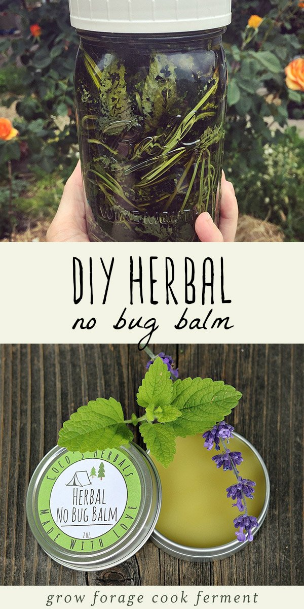 Learn how to make this DIY homemade herbal no bug balm to keep unwanted bugs away! Made with pest repelling lemon balm, you can avoid the toxic chemicals in commercial bug spray with this all natural herbal recipe. #herbalism #naturalmedicine #lemonbalm