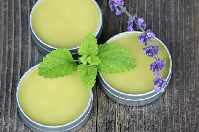 DIY Herbal No Bug Balm (with Lemon Balm)