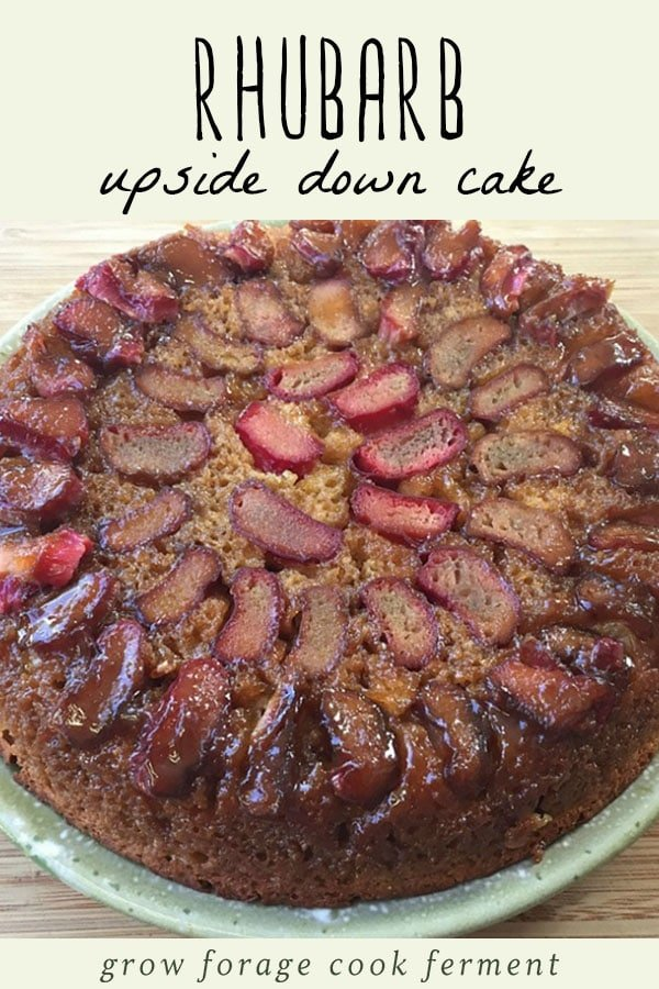 A whole rhubarb upside down cake on a blue plate.