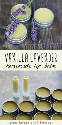 Homemade vanilla lavender lip balm in tubes and metal tins.