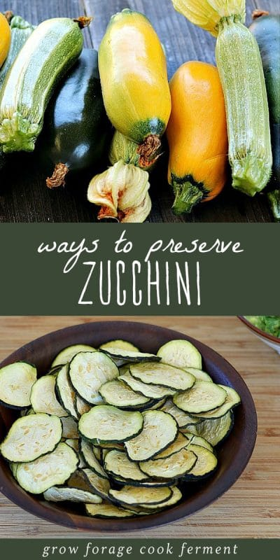 Freshly harvested zucchini and a plate of zucchini chips.