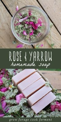 Rose infused oil and several bars of wild rose and yarrow soap on a wood background.
