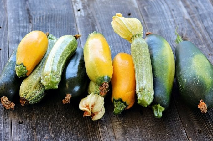 How to Preserve Zucchini: Ferment, Dehydrate, Freeze, and Can