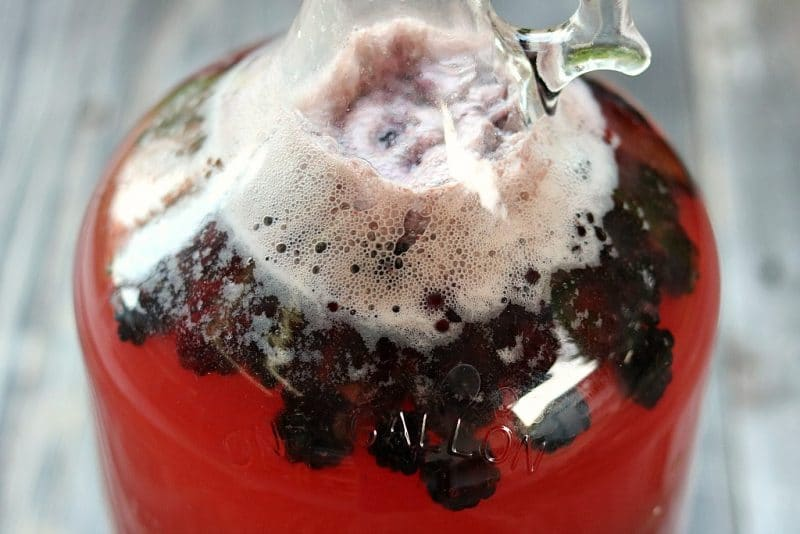 a jug of blackberry mead