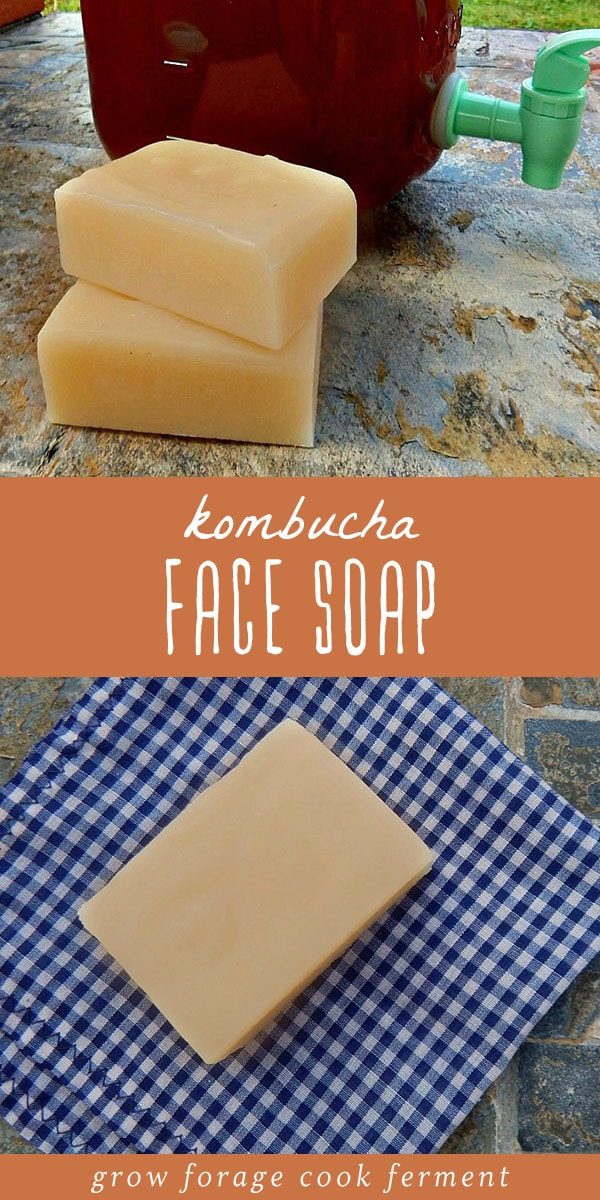 Kombucha is terrific for the skin, so it makes a great addition to homemade soap. Learn how to make this all natural, healthy kombucha face soap recipe. #soap #kombucha