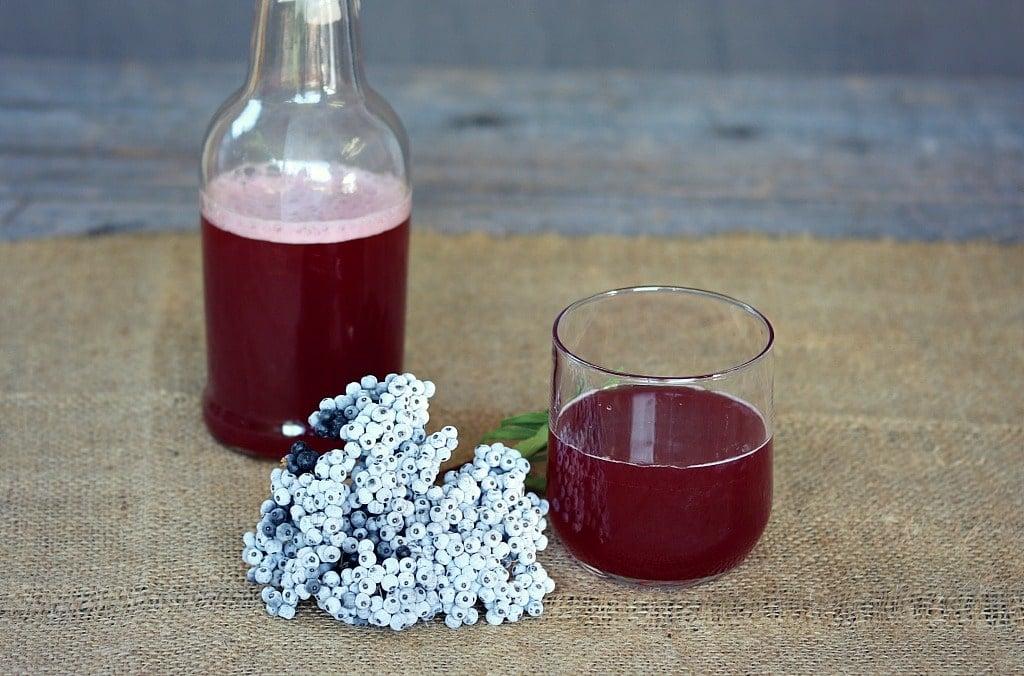 a glass of fermented elderberry soda