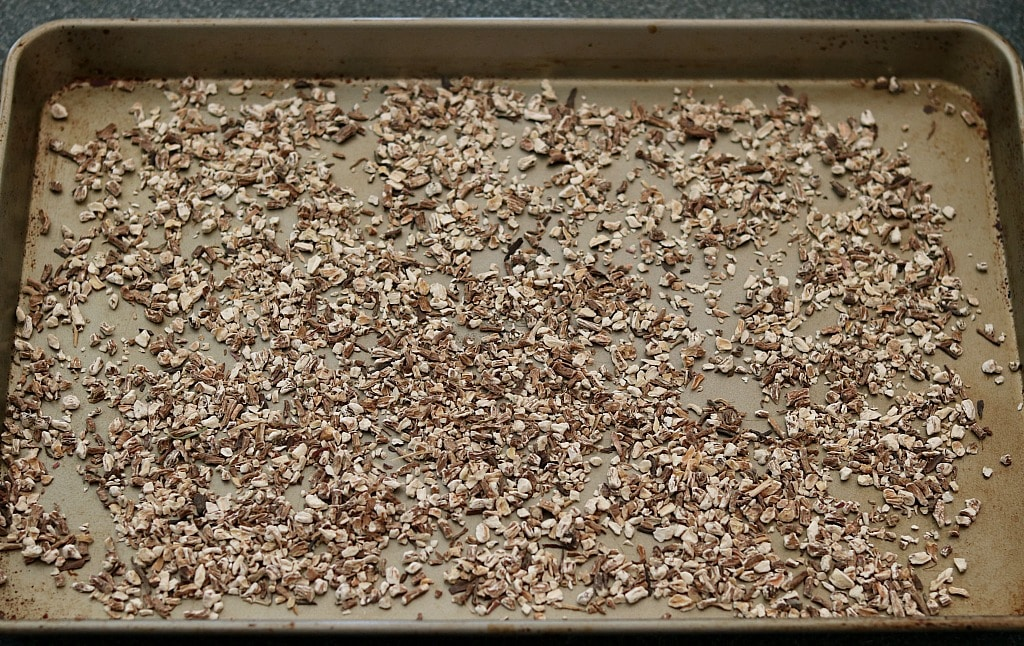dried dandelion root pieces spread out on a baking sheet