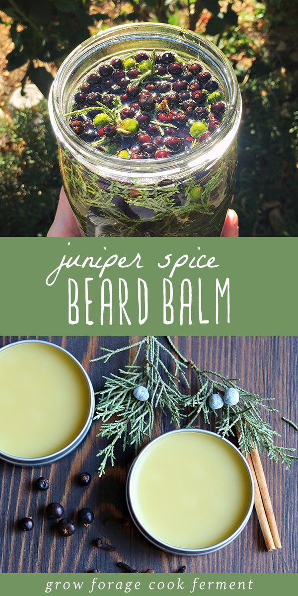 Learn how to make this DIY juniper spice beard balm for that bearded man in your life! This is a terrific homemade beauty product for men made with all natural ingredients including a homemade infused oil, beeswax, shea butter, and essential oils. Beard balm helps to condition, soften and style beards, and this juniper spice recipe smells amazing! It's the perfect gift for the bearded man in your life.  #beardbalm #essentialoils #infused oil #beauty #beard #juniper #herbalism #homeremedy