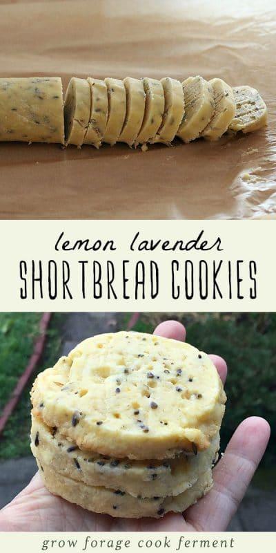 A roll of lemon lavender shortbread cookie dough, and a woman holding a batch of lemon lavender shortbread cookies.