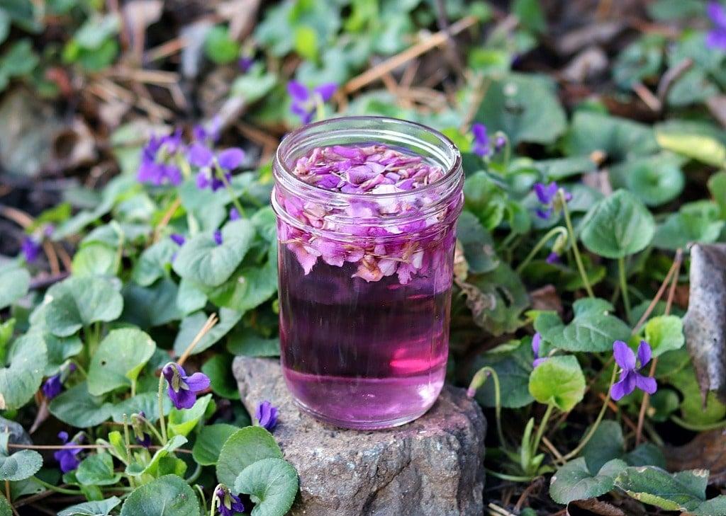 a jar of violet infused vinegar on a rock with violet flowers