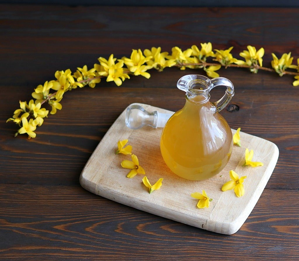 Forsythia syrup with a branch of fresh forsythia flowers
