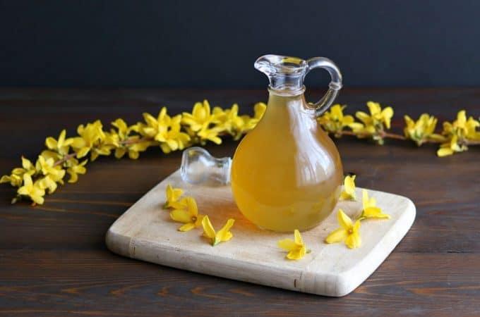 Forsythia Flower Honey Syrup