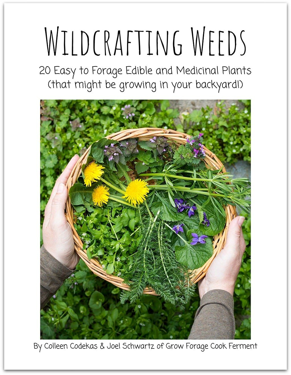 Wildcrafting Weeds eBook!