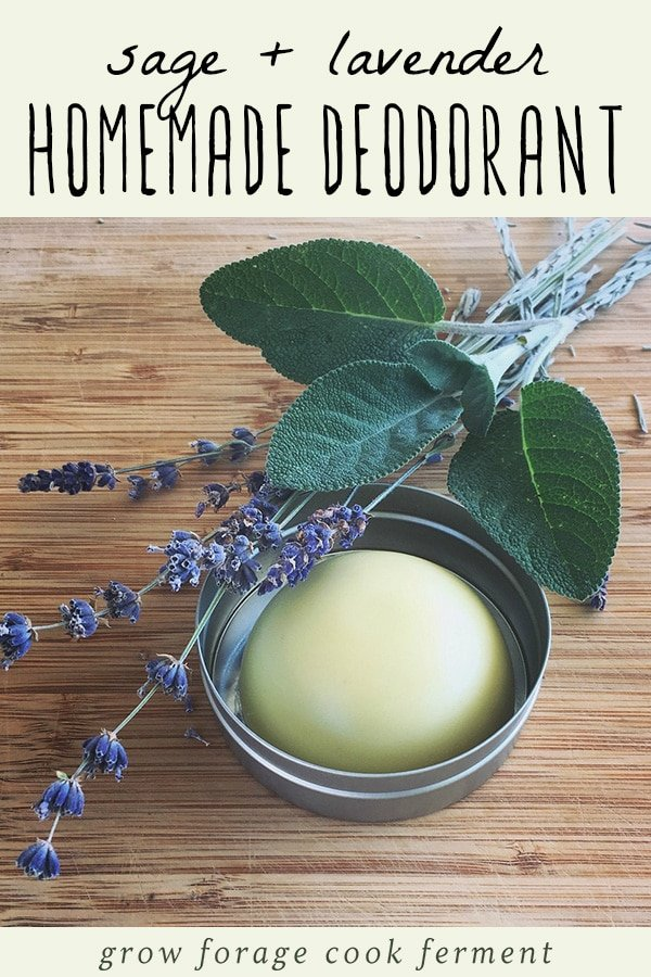 A tin of homemade deodorant with fresh sage and lavender.