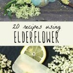 Elderflower tea and elderflower popsicles for a post on using elderflower.