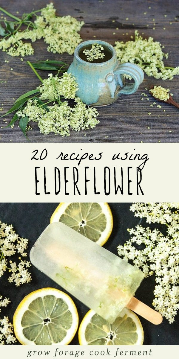 When elderflowers are in season make these great elderflower recipes! Includes recipes for elderflower cordial, liqueur, tea, jelly, cake, and more! #elderflower #elderflowerrecipes #elderflowercordial #elderflowerliqueur #elderflowertea #elderflowersyrup #elderflowersoda #elderflowercake #elderflowerjelly