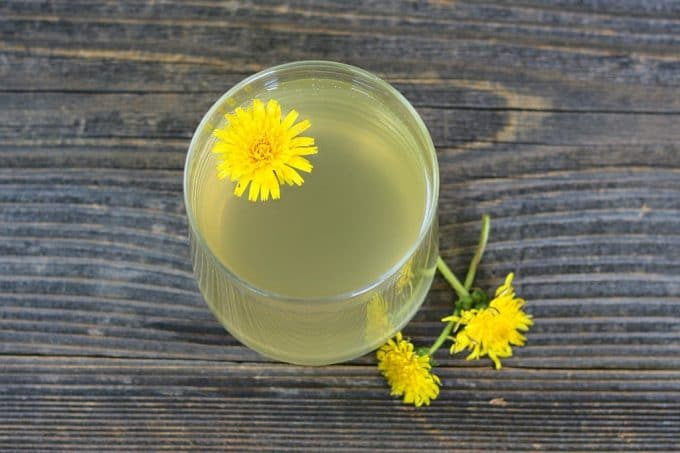 top view of a glass of dandelion mead with a dandelion flower in it
