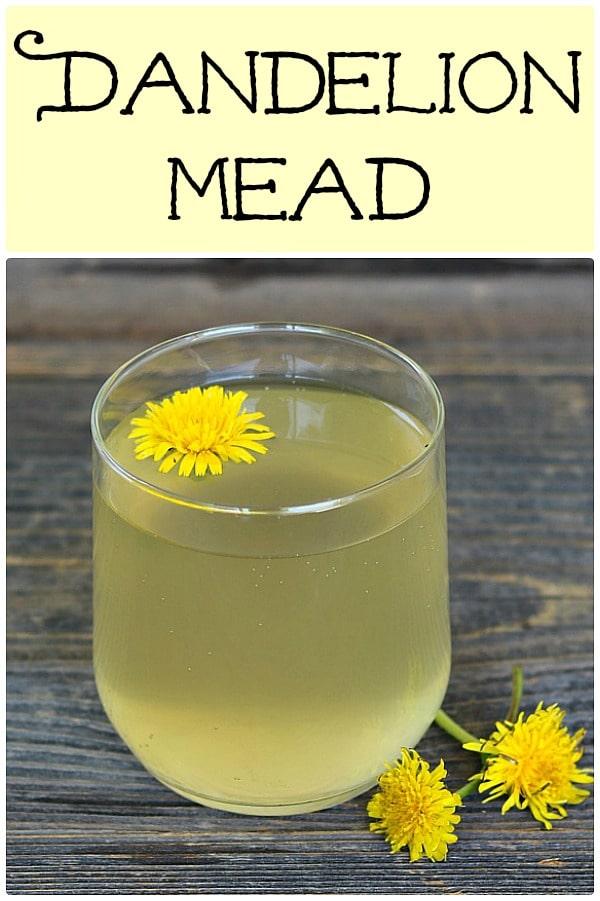 a glass of dandelion mead with a dandelion flower in it