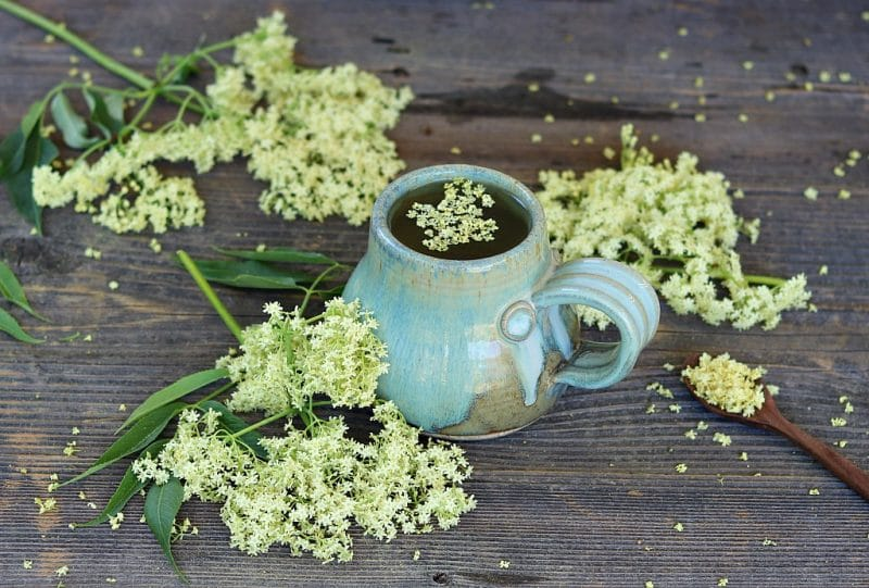a mug full of elderflower tea