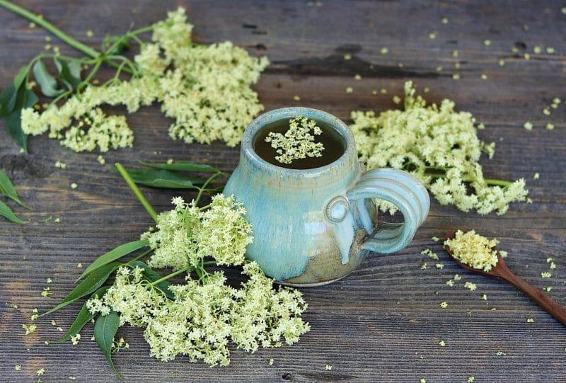 a mug full of elderflower tea