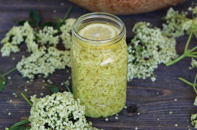 Elderflower Liqueur Recipe: Homemade St. Germain