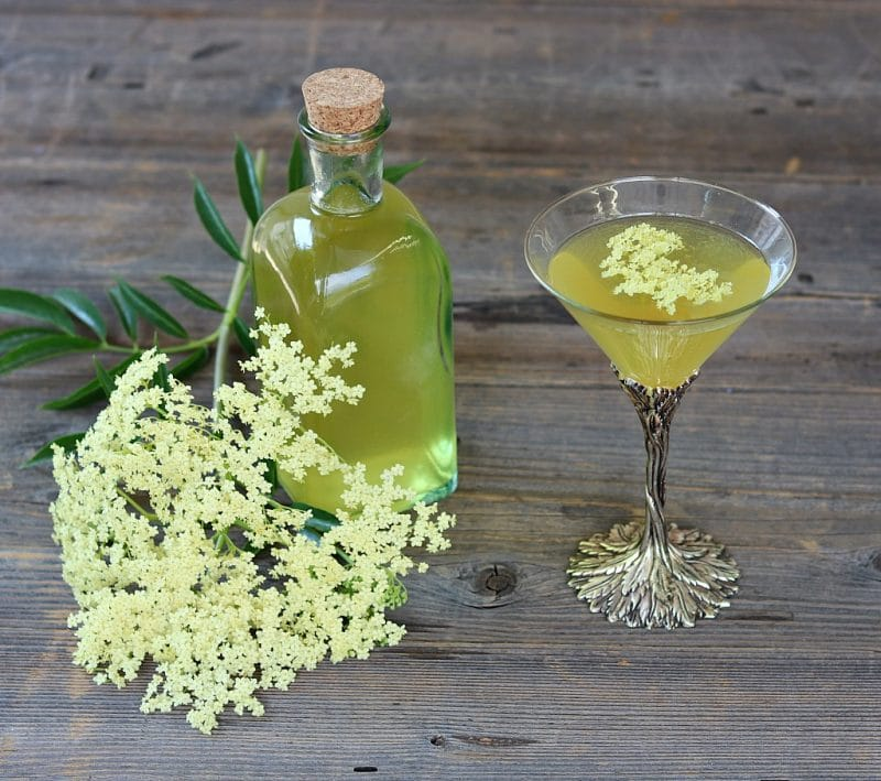 a bottle of elderflower liqueur and a martini glass with an elderflower drink