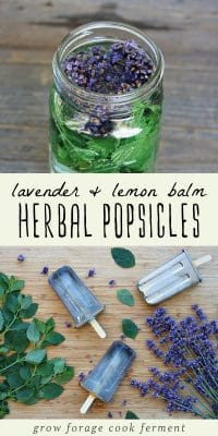 Lemon and lavender in a jar, and herbal lavender popsicles on a wood background.