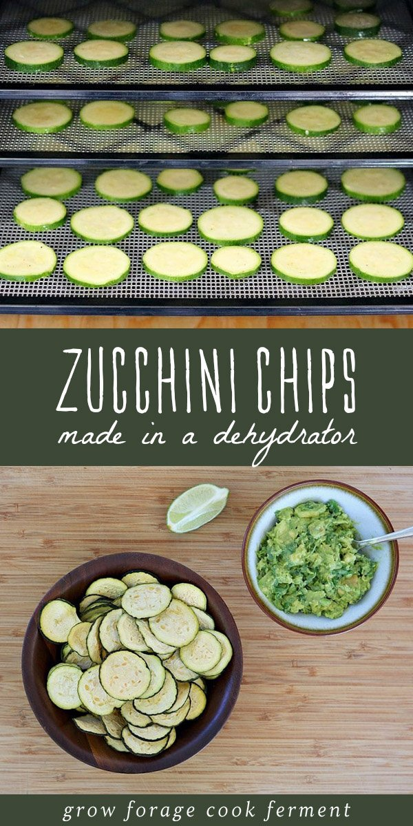 Raw zucchini slices in a dehydrator, and a bowl of dehydrator zucchini chips.