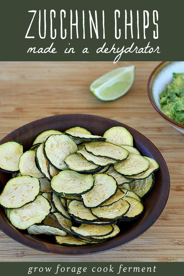 Dehydrator zucchini chips in a bowl with a side of guacamole.
