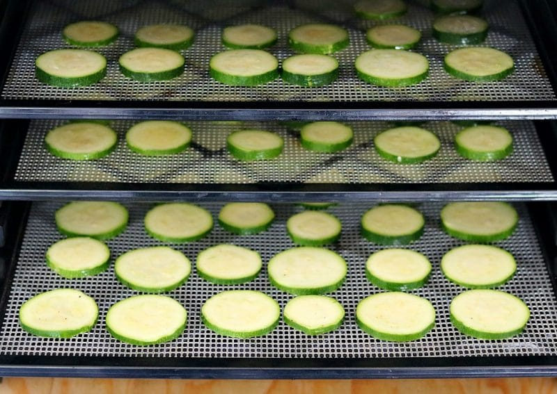 sliced zuccini rounds on dehydrator trays