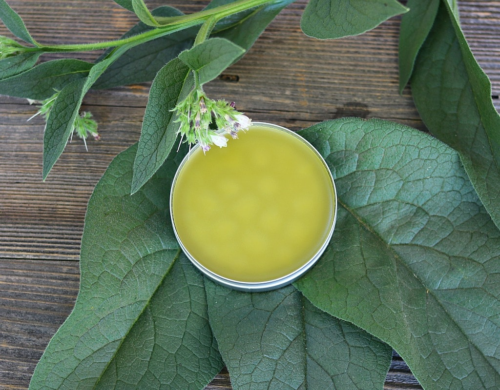 comfrey salve with comfrey leaves and flowers