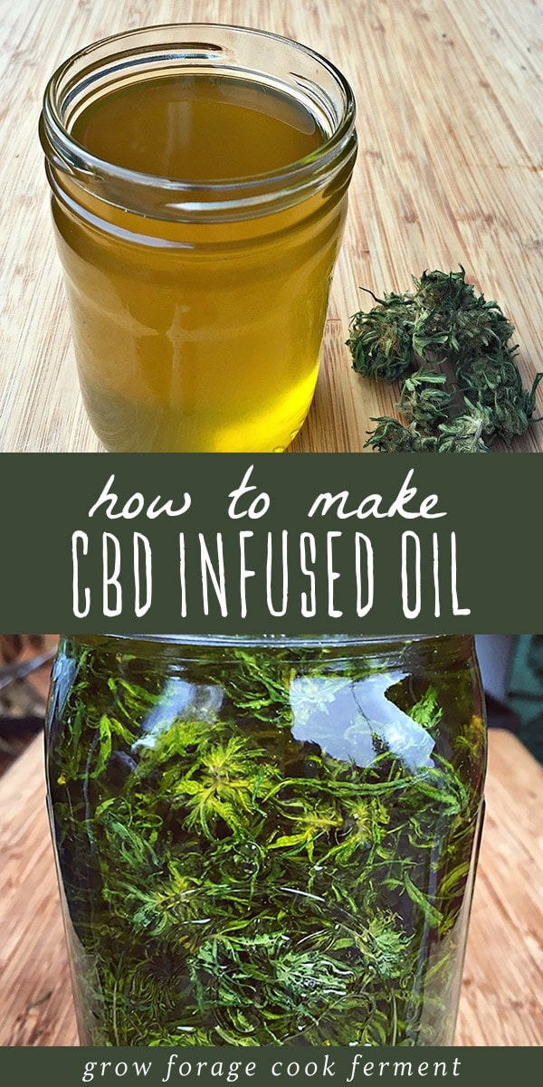 CBD oil is a healing topical home remedy with many all natural and medicinal uses! Learn how to make cannabis CBD infused oil at home with this easy recipe for beginning herbalists. CBD oil has many benefits and medicinal uses, the most popular being for all natural pain management. CBD infused oil can be used to make a healing salve or herbal tincture. Click through to learn everything you need to know about CBD oil! #cbd #oil #herbalism #naturalremedy #herbalmedicine #cannabis