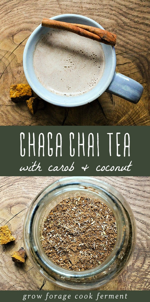 The chaga mushroom has a variety of health and medicinal benefits, but the easiest at home use is as a gut healing and anti-inflammatory remedy. Enjoy this potent health benefit as well as a flavorful treat with this chaga chai tea recipe with carob and coconut. This is an easy and straightforward recipe for beginner home herbalists to master, and it tastes delicious! #chaga #chai #tea #guthealth #herbalism #naturalremedy #herbalmedicine