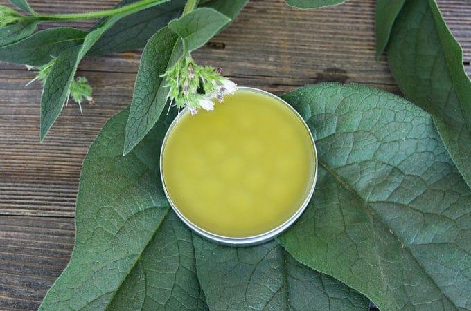 Comfrey Salve: Healing Herbal Recipe