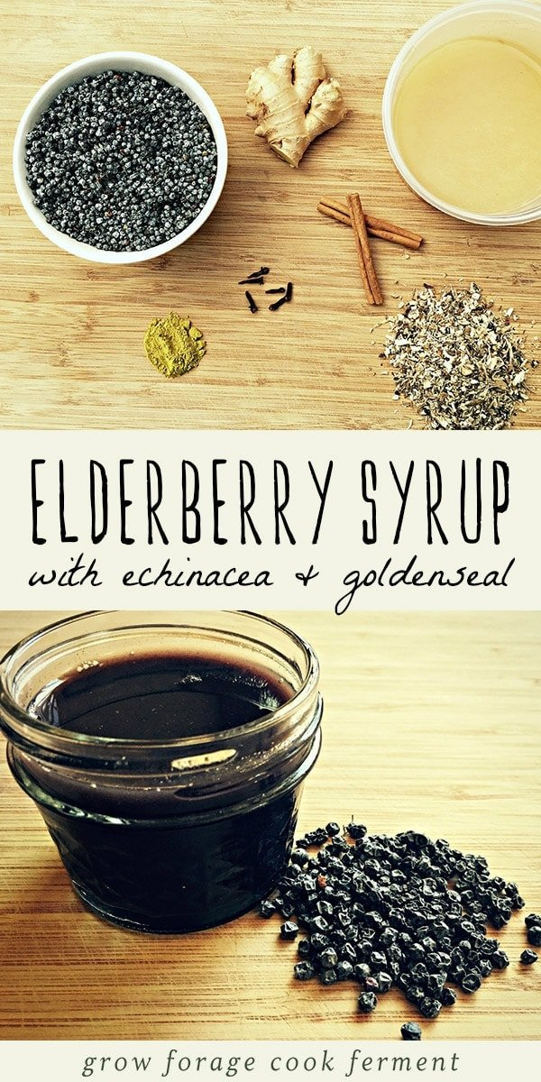 This homemade elderberry syrup is way more potent and healing than anything you can buy in a bottle! With echinacea, goldenseal, and ginger, it's an immune boosting powerhouse for cold and flu season. This herbal remedy is so easy for beginner herbalists to master, and has a variety of healing medicinal properties. Learn how to make this easy, immune boosting elderberry syrup today! #immunity #herbalism #elderberry #naturalremedy #homeremedy #herbalmedicine