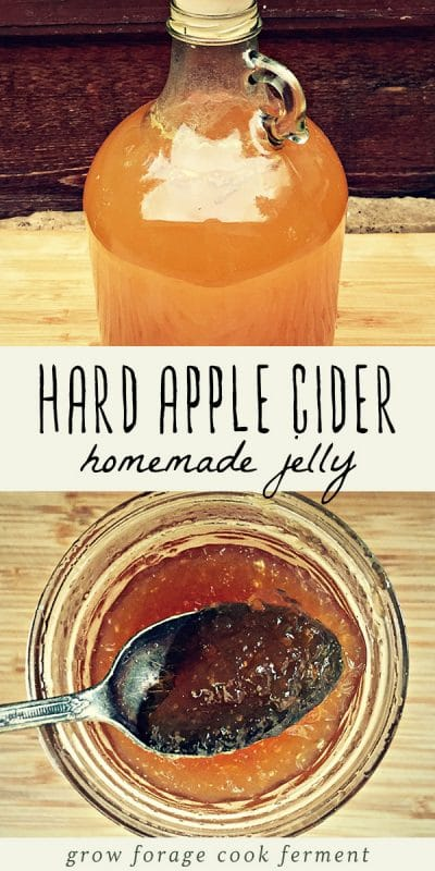 A jar of homemade hard apple cider jelly, and a jug of fresh hard apple cider.