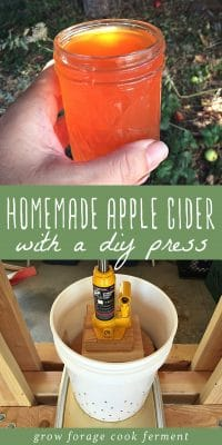A glass of homemade apple cider and a DIY apple cider press.