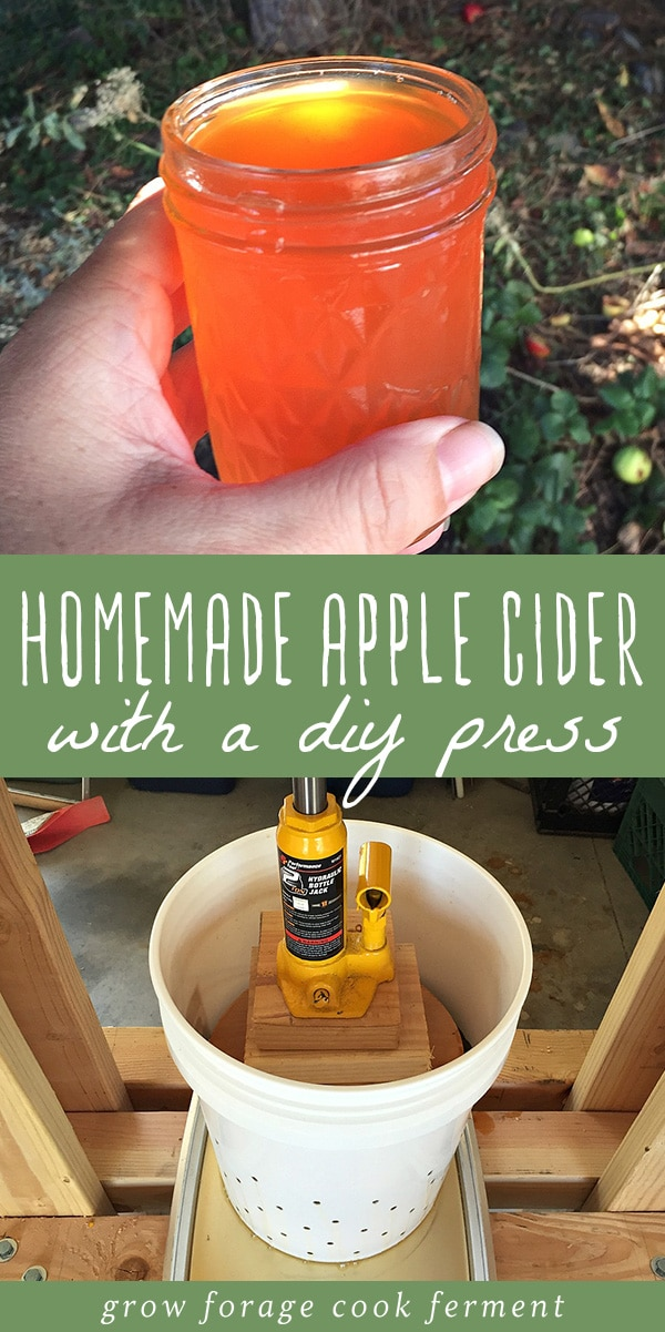 Learn how to build a DIY press for making your own homemade apple cider! Apple cider is delicious in the fall when apples are in season, but for the best apple cider, you should learn how to press you own with this DIY set up. This DIY apple cider press is so easy to make - you just need a few simple tools from your local hardware store. Click through to learn how to make your own homemade apple cider. #applecider #diy #homemade #cider #seasonal #apples