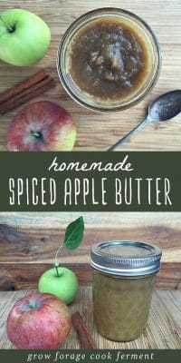 Jars of homemade spiced apple butter with fresh apples and a cinnamon stick.
