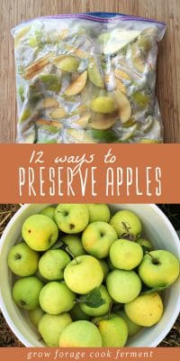 A bag of frozen apples to preserve and a bucket of fresh apples.